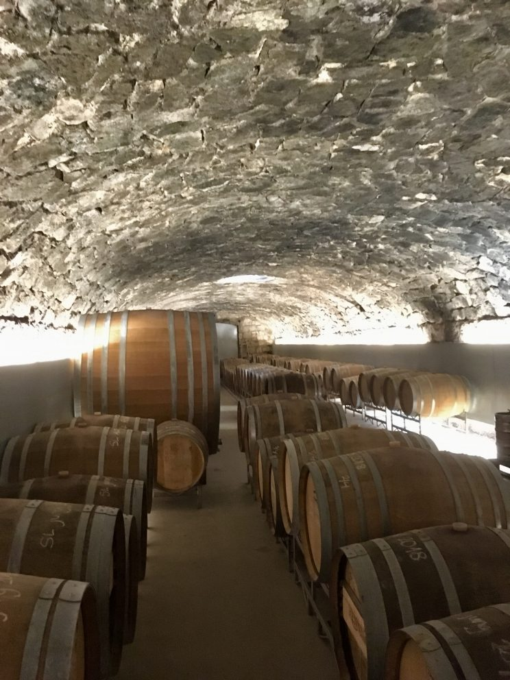 Weinkeller der Rennersistas