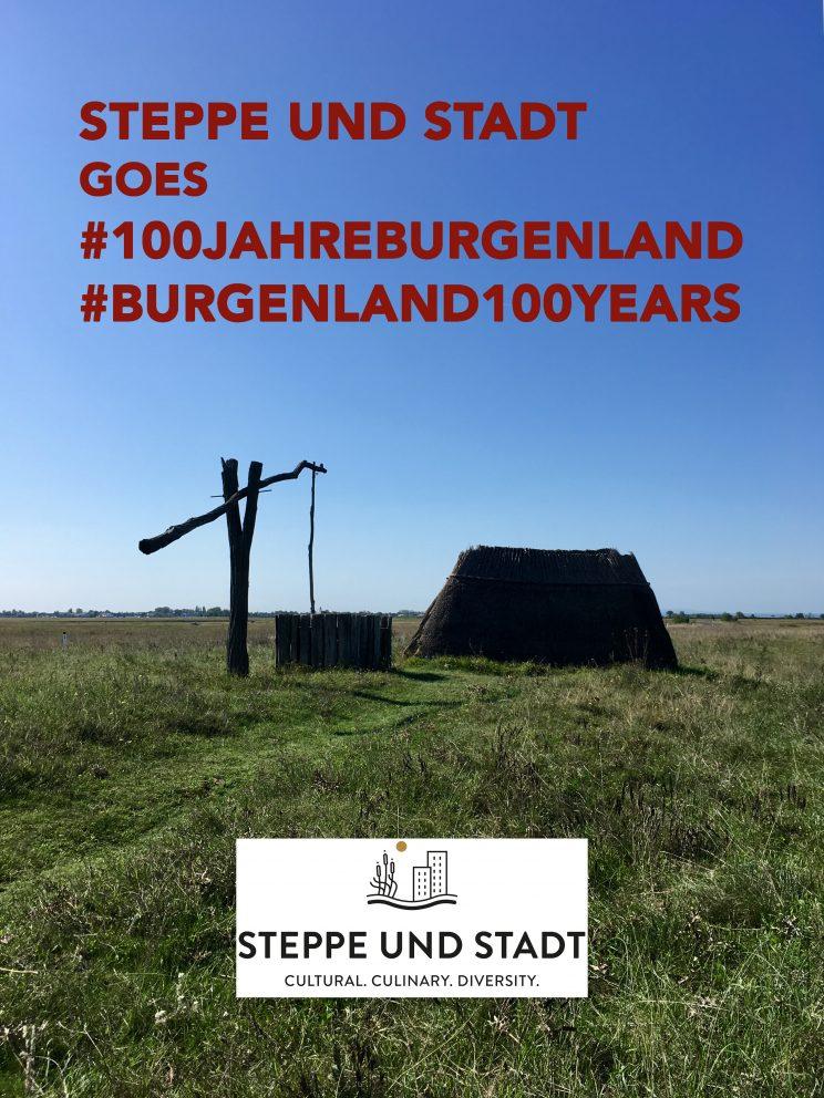Plakat Steppe und Stadt goes 100 Jahre Burgenland
